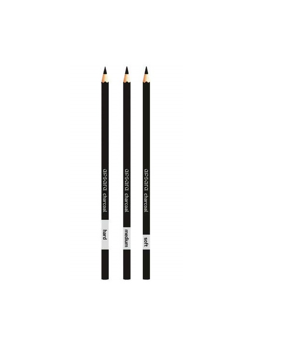Apsara Charcoal Pencils set of 3