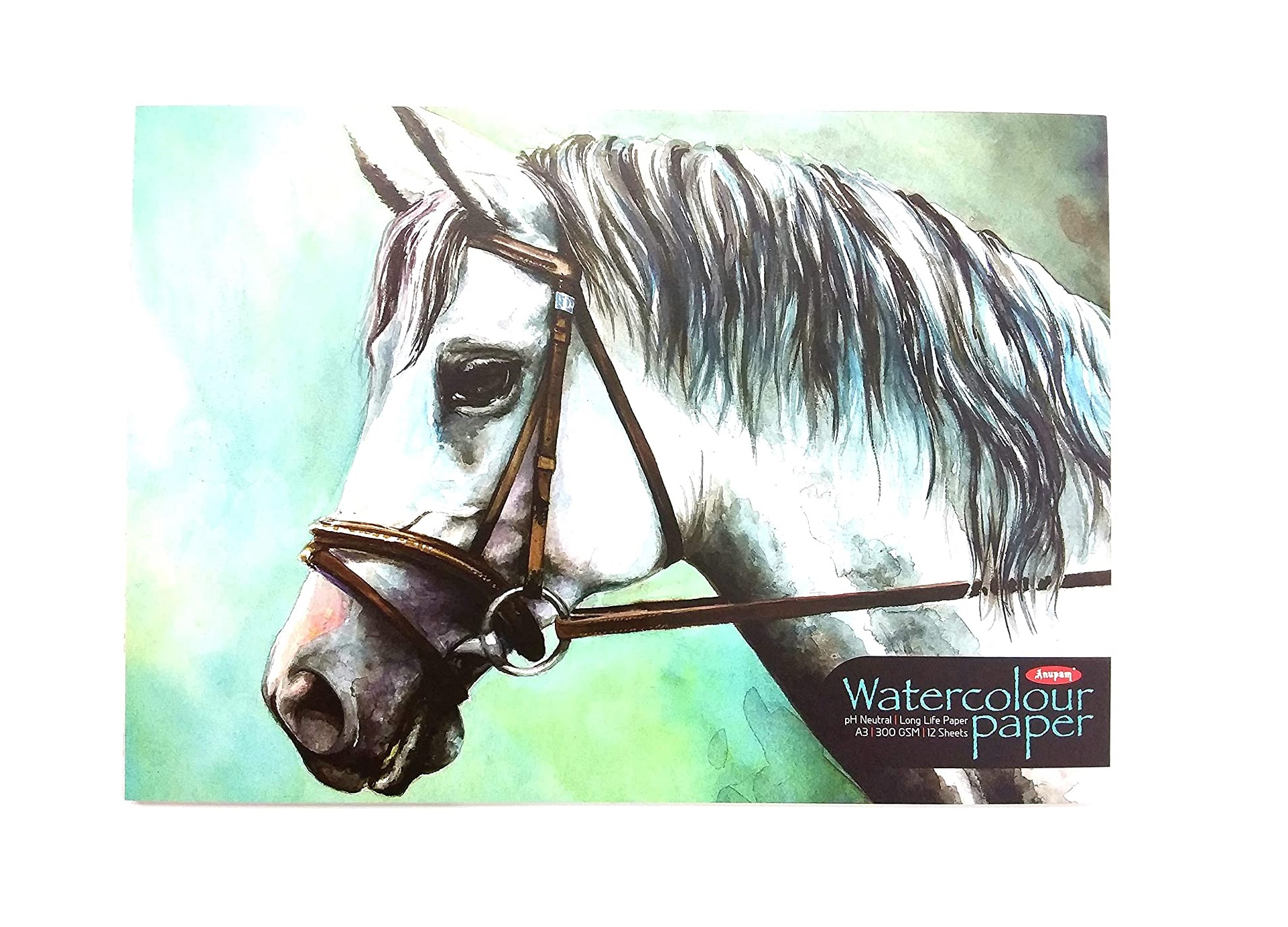 Anupam Watercolour Paper pad A3 Size with 300 GSM Paper (12 Sheets)